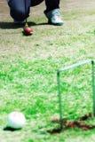 крокет Стоковые Фото