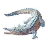 Крокодил акварели, изолированное животное аллигатора тропическое Стоковые Изображения RF