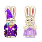 Кролики в костюмах волшебника и феи, изолированных на белизне иллюстрация штока