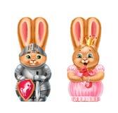 Кролики knight и принцесса, изолированная на белизне иллюстрация штока