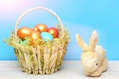 Кролик, заяц забавляется, праздник пасхи весны, красочные яичка в корзине Стоковые Изображения