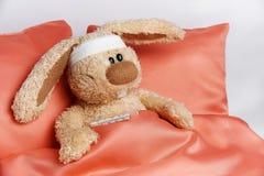 Кролик игрушки нездоровый стоковое изображение