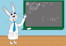 кролик лекции по иллюстрации толковейший Стоковые Фотографии RF