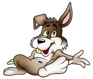 кролик ослабляя Стоковые Изображения RF