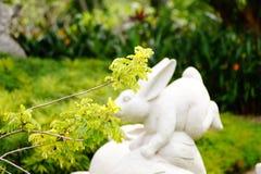 Кролик памятника есть цветки стоковая фотография rf