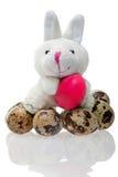 кролик пасхального яйца смешной Стоковая Фотография RF