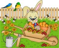 кролик сада Стоковое Изображение RF