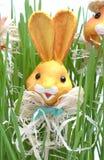 кролик травы пасхи Стоковое Изображение