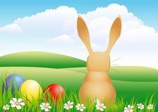 кролик травы яичек иллюстрация штока