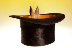кролик шлема волшебный малый стоковые изображения