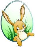 кролик иллюстрация штока
