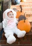 кролик costume Стоковое Изображение