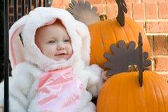 кролик costume Стоковые Фотографии RF