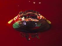 Крона дождевой капли Стоковая Фотография