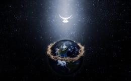 Крона терниев на земле Америке Стоковые Фотографии RF