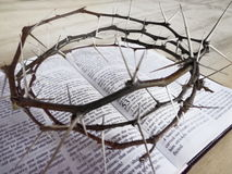 Крона терния Иисуса стоковое фото rf