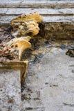 Крошащ стена мавзолея с горгульей защищая ее, как текстурированная предпосылка стоковая фотография rf