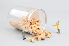 Крошечные гайки минирования игрушки с бутылкой Стоковые Изображения RF