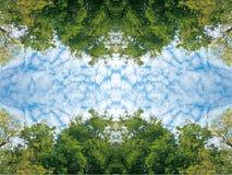Крошечные облака и сочный зеленый лес дерева березы листвы и голубых неба весной на перспективе текстуры предпосылки природы рамк Стоковые Изображения