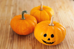 Крошечные тыквы хеллоуина Стоковое фото RF