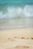 Крошечный краб призрака peeking вне от роет Стоковая Фотография