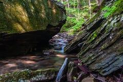 Крошечный поток в Catskills Стоковая Фотография