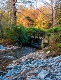 Крошечный поток в Catskills Стоковое Фото