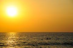Крошечный силуэт шлюпки каяка на заходе солнца Стоковое Изображение RF