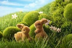Кролики пасхи Стоковое Изображение