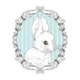 Кролик в рамке чертеж вручает ее нижнее белье утра вверх по теплым детенышам женщины также вектор иллюстрации притяжки corel Стоковая Фотография RF