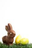 Кролик зайчика шоколада и пасхальные яйца Стоковое Изображение RF