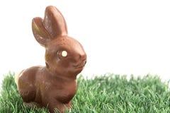 Кролик зайчика шоколада на траве Стоковые Фото