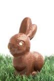Кролик зайчика шоколада сидя на траве Стоковое Изображение RF