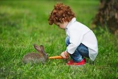 Кролик мальчика подавая с морковью в парке Стоковое Изображение