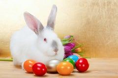 Кролик пасхи с красочными яичками Стоковые Изображения RF