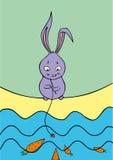 Кролик-рыболов Стоковое Изображение
