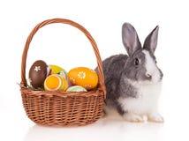 Кролик с корзиной на белой предпосылке Стоковое Изображение