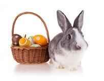 Кролик с корзиной на белой предпосылке Стоковые Изображения RF