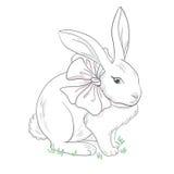 Кролик с смычком Бесплатная Иллюстрация