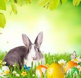 кролик травы пасхи Стоковое Фото