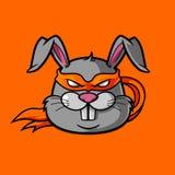 Кролик Ninja Стоковое Изображение