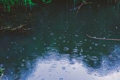 Круги дождя романтичные на воде Стоковое Изображение