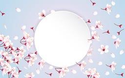 Круглая бумага с цветками вишневого цвета стоковые фото