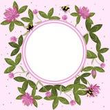 Круглая граница листьев клевера, цветков и шмелей, пустой рамки цветка Состав вектора бесплатная иллюстрация