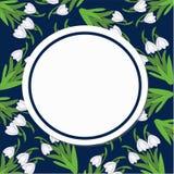 Круглая карточка на картине snowdrops на синей предпосылке Стоковое фото RF
