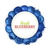 Круглая покрашенная рамка составленная очень вкусного плодоовощ голубики Иллюстрация карточки вектора Голубая черника свежая и со Стоковые Фото
