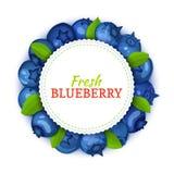 Круглая покрашенная рамка составленная очень вкусного плодоовощ голубики, иллюстрации карточки вектора Голубая черника свежая и с Стоковое Фото