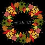 Круглая рамка под текстом или фото, от красочных листьев осени дуба, клена и каштана Стоковое фото RF