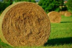 Круглая связка сена и соломы