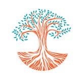 Круглое дерево с корнями Стоковое Фото